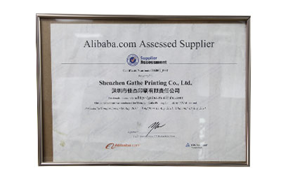 Supplier Assessment Certificate No. 6503807 P+T阿里巴巴